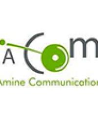 AMINE COMMUNICATION