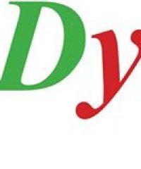DYNAMIC TOURS BUDAPEST DMC